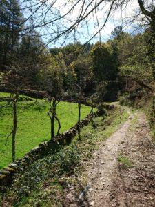 wandelvakantie Noord Portugal